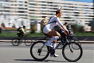 Милый велокролик :)