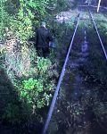 Линия трамвая № 11 (Кто сказал что в -Са-Засратове нет дорог? Железная дорога - железная. Типичная высадка пассажиров, на типичной трамвайной остановке. На самом деле был случай, когда трамваи якобы застряли(как в 70% случаев), -машинист-быдло-танкист отк