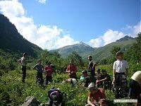 Растительность постепенно укорачивается, и превращается в «альпийские луга».