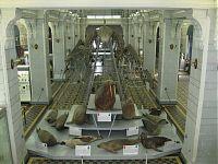 Скелет синего кита (двадцать семь метров!), а также чучела моржей, котиков и прочей живности в зоологическом музее.