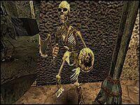 Боец скелетов.
