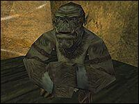 Таррок — орк-раб в Свободной Шахте, захваченный солдатами Нового лагеря и силой принуждённый работать в шахте.
