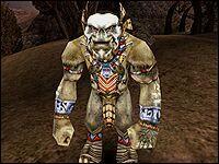 Ур-Шак — шаман орков, или, вернее, «сын духов», как он называет себя сам.