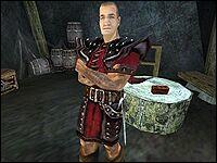 Ульберт — стражник, как и многие обитатели Старой Шахты.