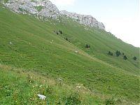 Зелёные склоны...