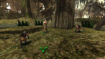 Послушники занимаются сбором болотника.