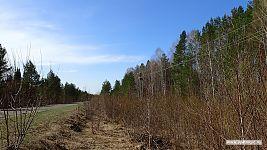 Точка старта - обочина дороги где-то на границе Ульяновской области.