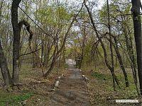 Дорога с верхнего на средний ярус Владимирского сада.
