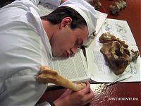 Если бы филологи учились так же, как врачи...