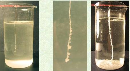 Как сделать кристаллы из соли в домашних условиях за 1 день