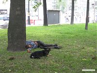 Собака, охраняющая бомжа. Типичный питерский пейзаж.