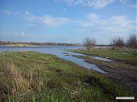 Позже это станет дорогой, ну а сейчас - натуральное болото!