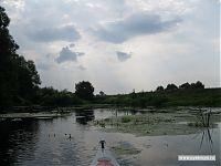 Типичный пейзаж: водичка, кувшинки, водоросли. Шириной реки не обольщайтесь: глубина тут была примерно по колено.