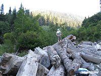 Брёвна в лагере лесорубов.